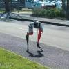 Robot Kesi